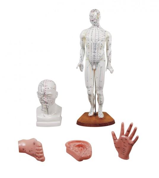 Chinesisches Akupunkturset 5 Modelle