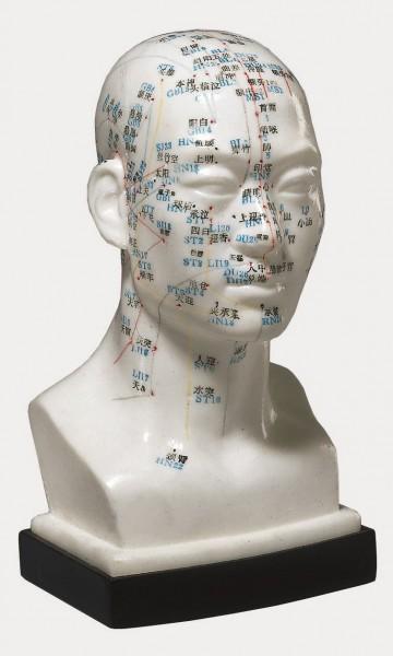 Akupunkturmodell Kopf ca. 18 cm hoch.