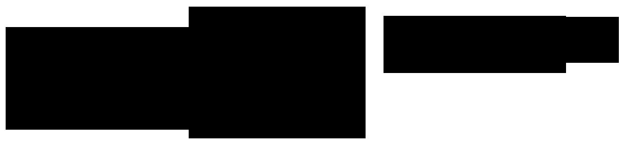 C.Bruno Bayha GmbH